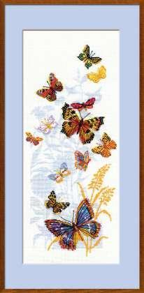 Полевые бабочки