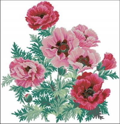 картинки цветов скачать бесплатно: